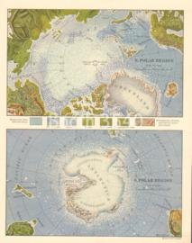 Geographical Features Of The Polar Regions